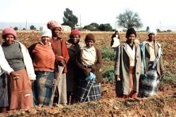 South Africa Steps up Land Reform